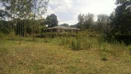 Prime 1 acre in Karen