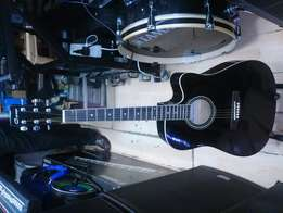 Guitar Acoustic full size 8900