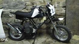 pw 50cc for sale