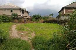 Land (100 by 100) For Sale In Ughelli, Delta State