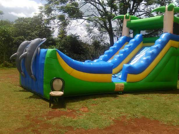 Slide water slides for hire Westlands - image 7