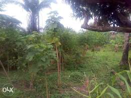 One Acre of land at opa area Ile-Ife
