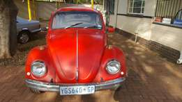 1973 Running red beetle 1600 with papers