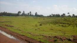 1/8 plots for sale at maili nne dispensary in eldoret.