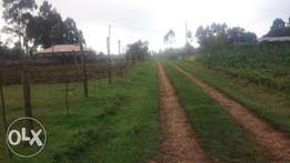 Ngarariga 100X100 plot for sale in Limuru at 2.6 Million
