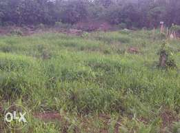 PRIME 1/2 ACRE Land in Ngong suitable for residential or agribusiness