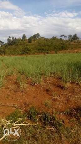 15acre land on sale in Pala,kabuoch,20km off Rongo town.160K per acre Kamenya - image 1