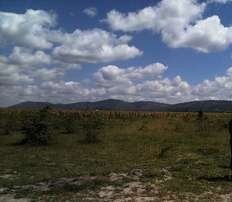 1/4 Acre in Syokimau