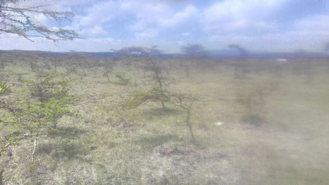 3 Acre Parcel of Land Langata - image 3
