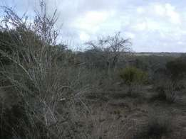 Affordable landfor sale at Ksh 15,000 per acre in