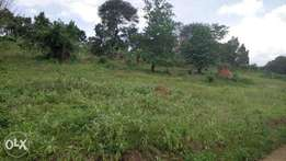 Hot Quick sale from a Financial Institution: 0.094 Hectares of Land
