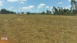 Prime vacant plots for sale in nyeri