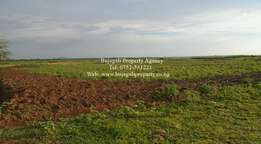 For Sale: 700 Acres of Freehold Titled Farm Land in Luuka