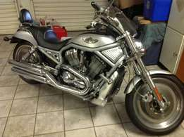 Must have, Limited Edition, VROD Harley Davidson 1200cc