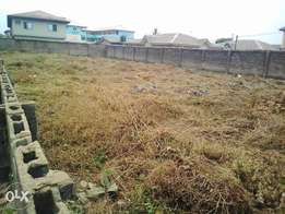 For Sale ! Virgin Land Along Alaja Olayemi Road Ayobo Lagos