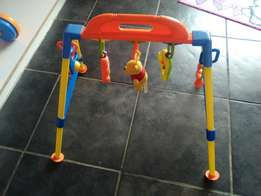 Fisher pride playgym