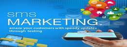 Sms Marketing for You