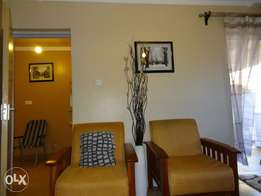 Elegant and Budget Priced Fully Furnished Apartments - Ruaka