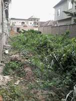 Land in a mini estate inside town C of O. Station N5,5miill full:N11m