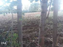 Prime Serene Land and Home in Kisii