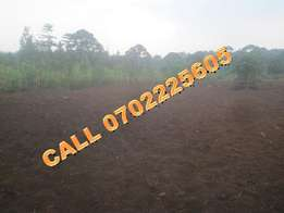 Hot selling 50 by 100ft plot for sale in Mukono-Kiyunga at 14m