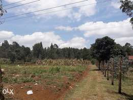 1/4 acre plots for sale in Limuru/kwambira near shopping center