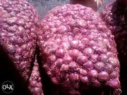 Tanzania quality onions for sale