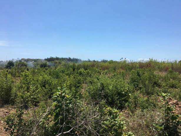 Two parcels each measuring 2.25 acre diani, one on 3rd row and one 4th Miritini - image 2