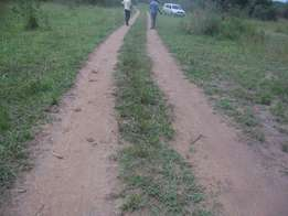 900 acres on sale, in nakasongola-goes upto L. kyoga at 1m per acre