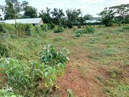 Two adjacent plots (0.6 ha) in siaya, about 1 km from siaya prison