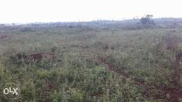 Prime land 10 acres in Kanyamwa Homa bay county