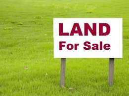 Land for sale 50 by 100 ready Title Deeds