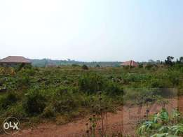 50*100ft of plot on sale in mukono-kisowera at 7m