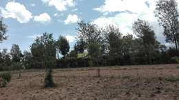 Quick sale! 2 acres developed in Nanyuki Airstrip