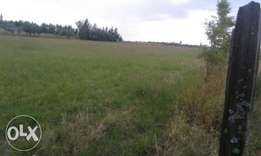 Safehomes Properties several 50x100plots in mercy Njeri.