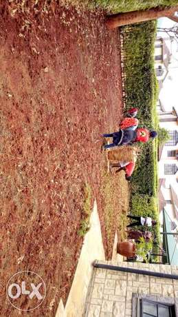 Landscaping Township - image 1