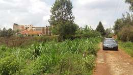 Prime 50x100 Plots for sale in Kwa Mbira Limuru near Highway at 1.5 M