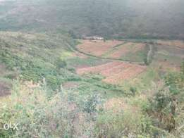 100 acres in Kinangop Miharate ksh 600,000 k pa.