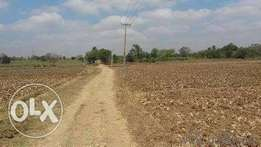 69 Plots Of Land For Sale Close To Rccg Camp/ Mowe Sharing Fence With