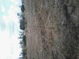 2 acres at makuyu. Approx 6 km off tarmac.