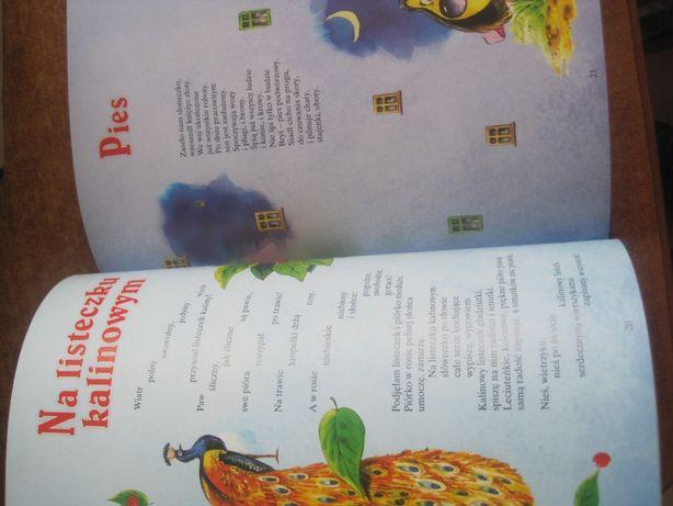 Książka Dla Dzieci Idzie Niebo I Inne Wiersze Ewa Szelburg