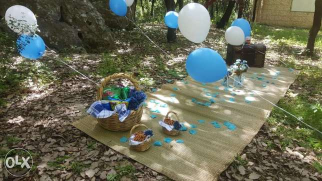 Picnic set up