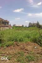 Prime plots for sale in membly 40 by 80, 1/8 and 1/4 acre from ksh 3.8