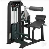Brand new imported original standard commercial Abdominal Machine