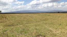 Kenya Safehomes 60 acres for sale in Ngata Nakuru county