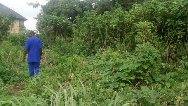 2 plots of land for sale at Oluyole Oluyole - image 5