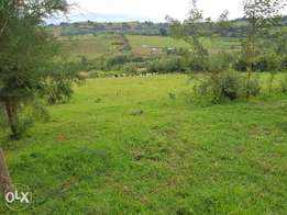 2 acres Chepsir with timber developments 3.5m
