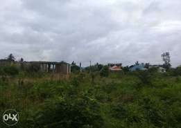782 Sqmts Residential Plot at Bunju B