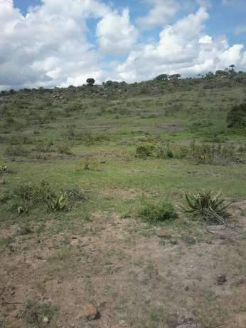 3 and 1/4 acres at Juja farm Mumba area. With a clean Freehold title. Kalimoni - image 4