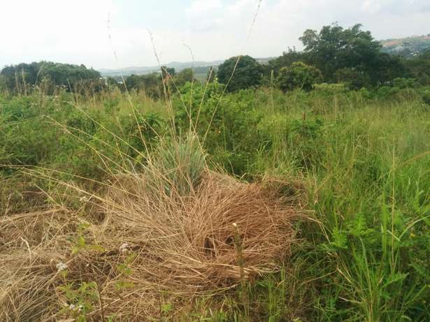 A u tired of renting and u want to cheap plot with landtittle on table Kampala - image 5